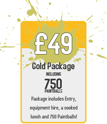 Bronze Package : £49 for Paintball Including 750 Paintballs